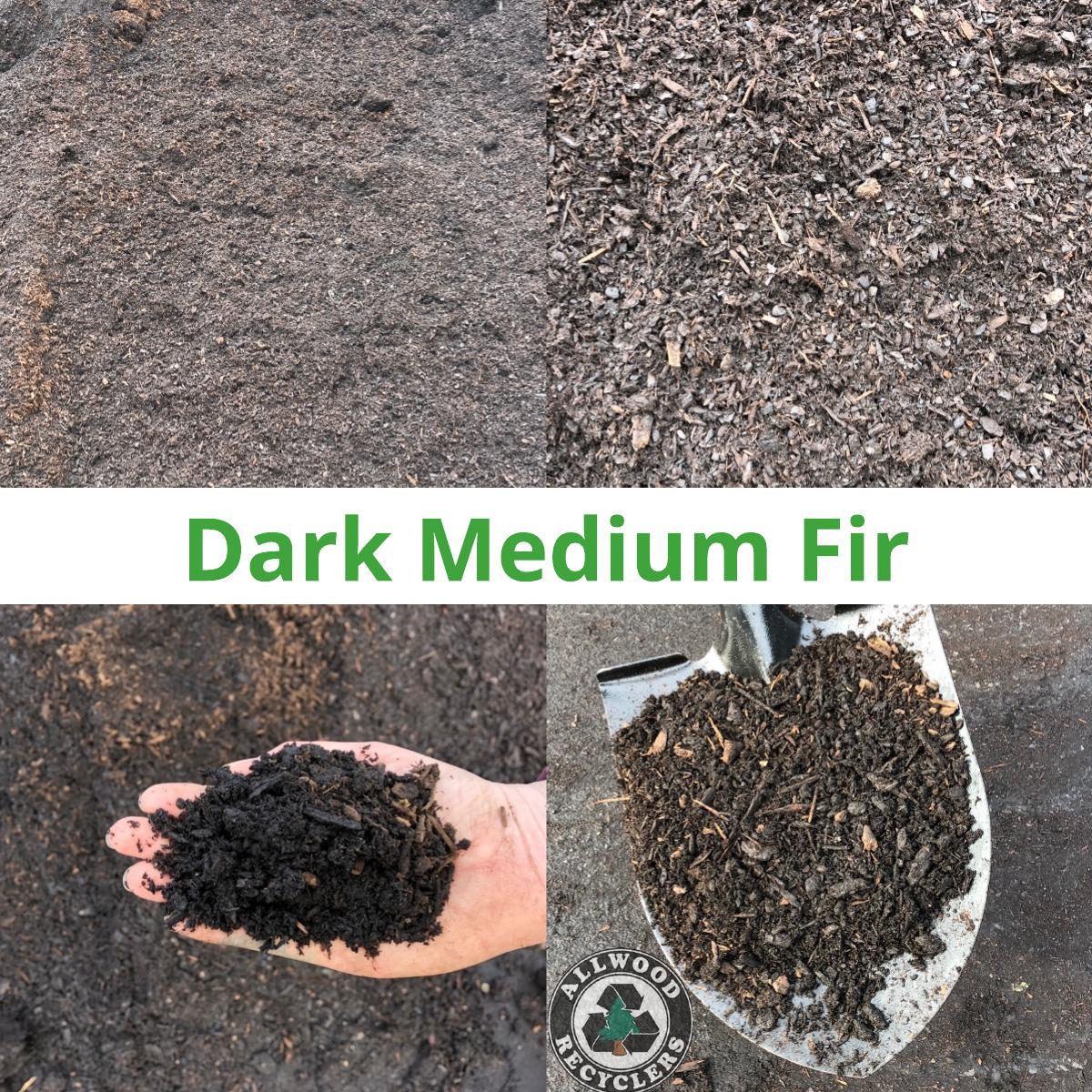Dark Medium Fir