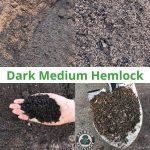 Dark Medium Hemlock