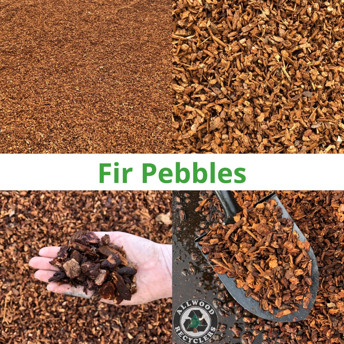 Fir Pebbles