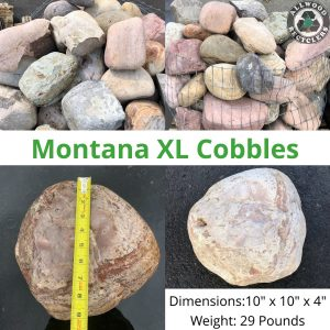 Montana XL Cobble
