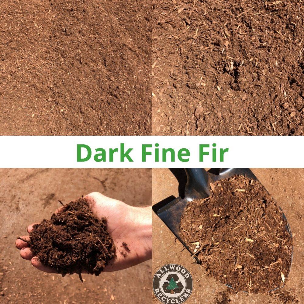 Dark FIne Fir